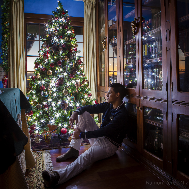 La navidad y el árbol. Foto Ramón Pérez Niz.