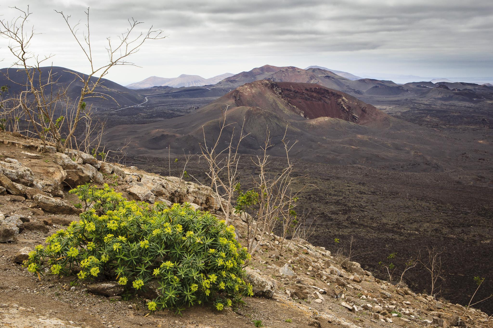 Foto de Ramón Pérez Niz. Montañas del Fuego