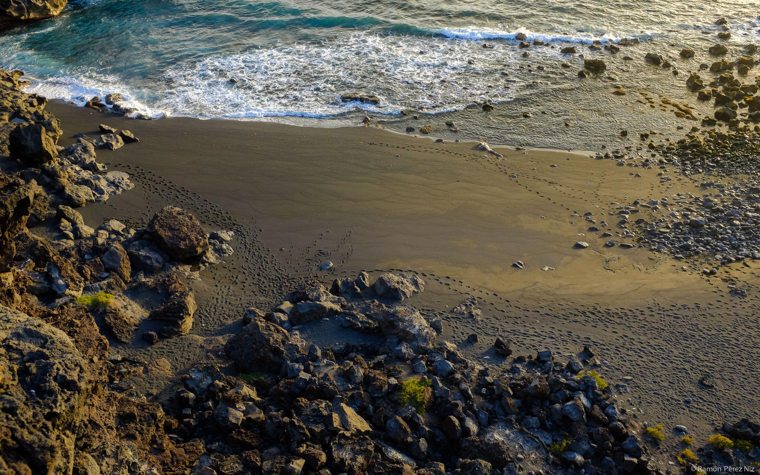 Foto de Ramón Pérez Niz, huellas en la playa del Paso. Lanzarote