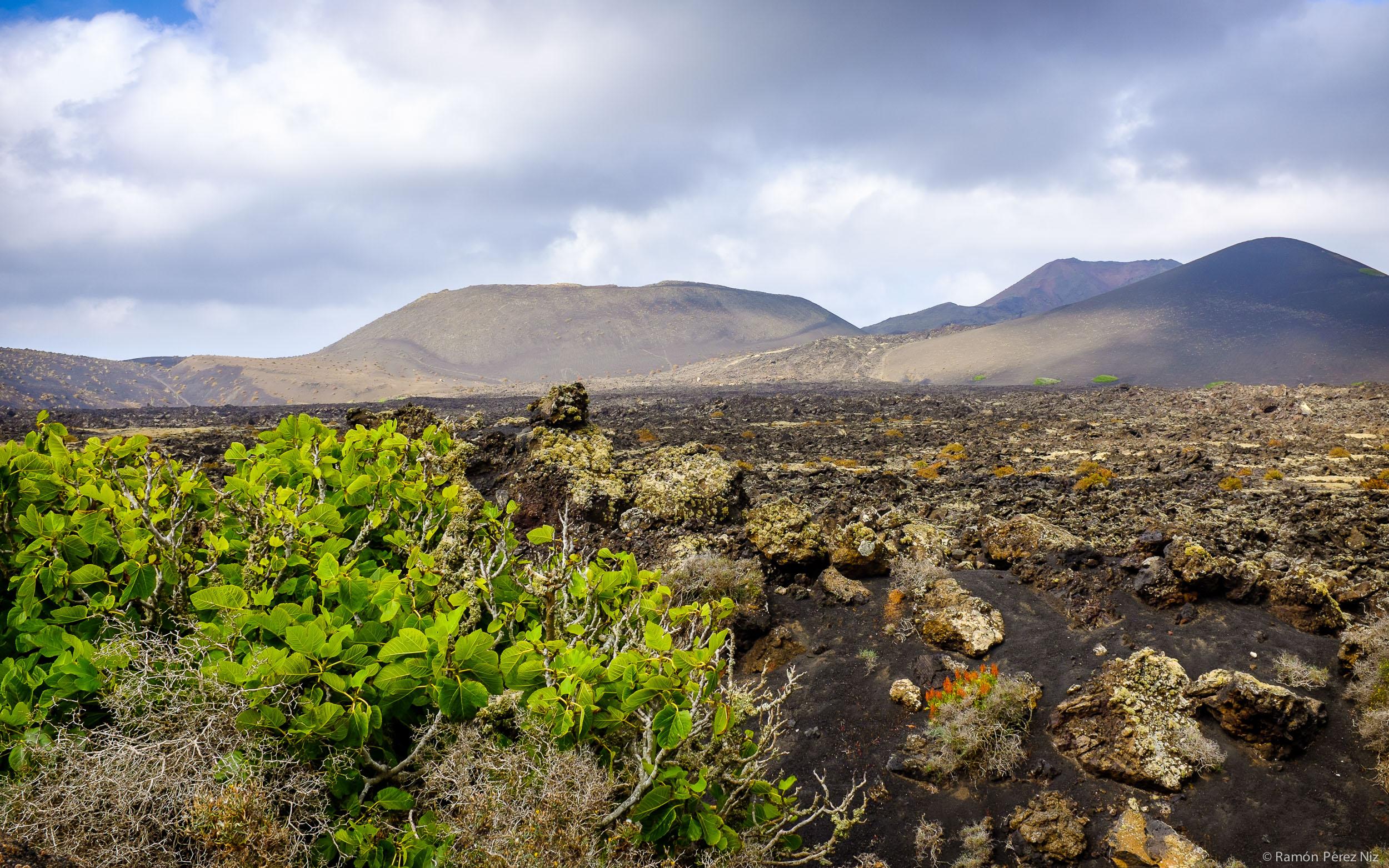 Foto de Ramón Pérez Niz, Volcán de Santa Catalina