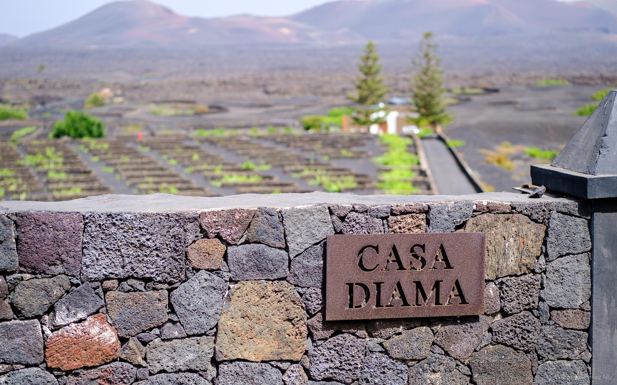 Foto de Ramón Pérez Niz en La Geria