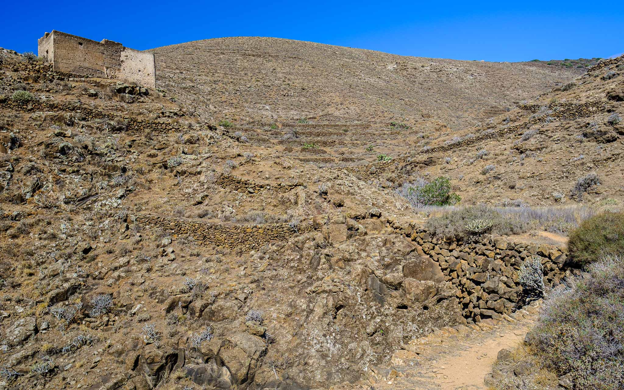 Foto de Ramón Pérez Niz en Guatiza
